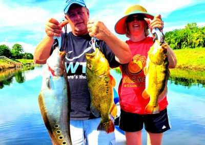 Peacock Bass Fishing Charters